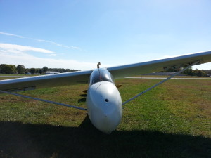 sgs 2-33 training glider image